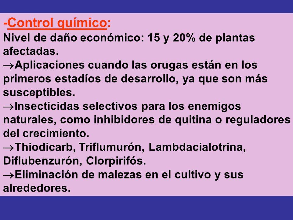 -Control químico: Nivel de daño económico: 15 y 20% de plantas afectadas.