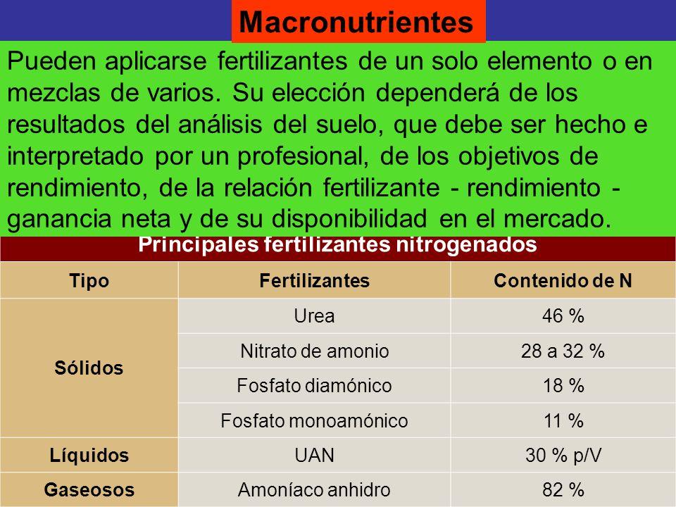 Principales fertilizantes nitrogenados