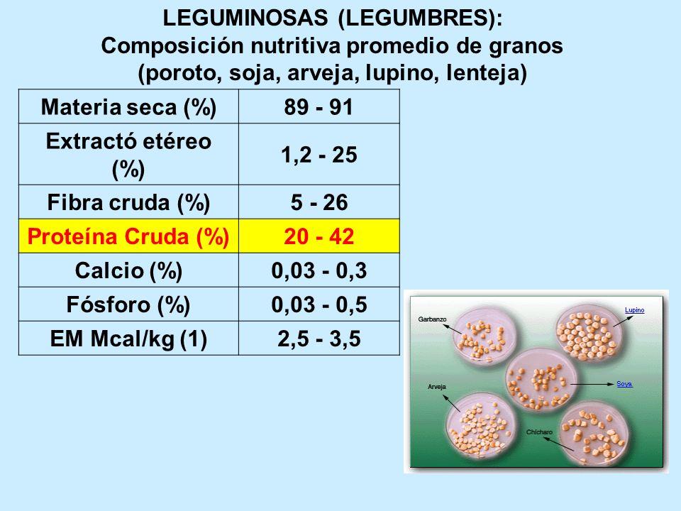 LEGUMINOSAS (LEGUMBRES): Composición nutritiva promedio de granos