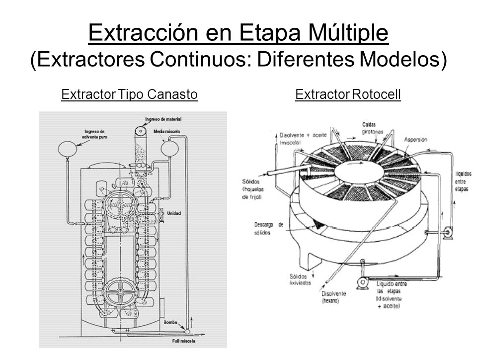 Extractor Tipo Canasto
