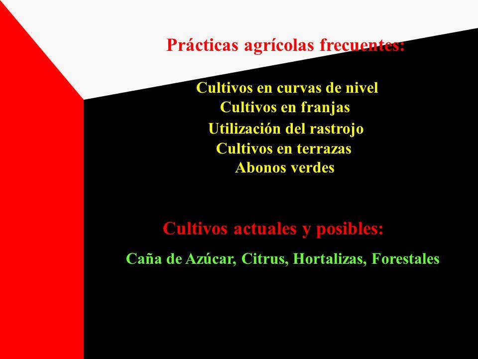 Prácticas agrícolas frecuentes: