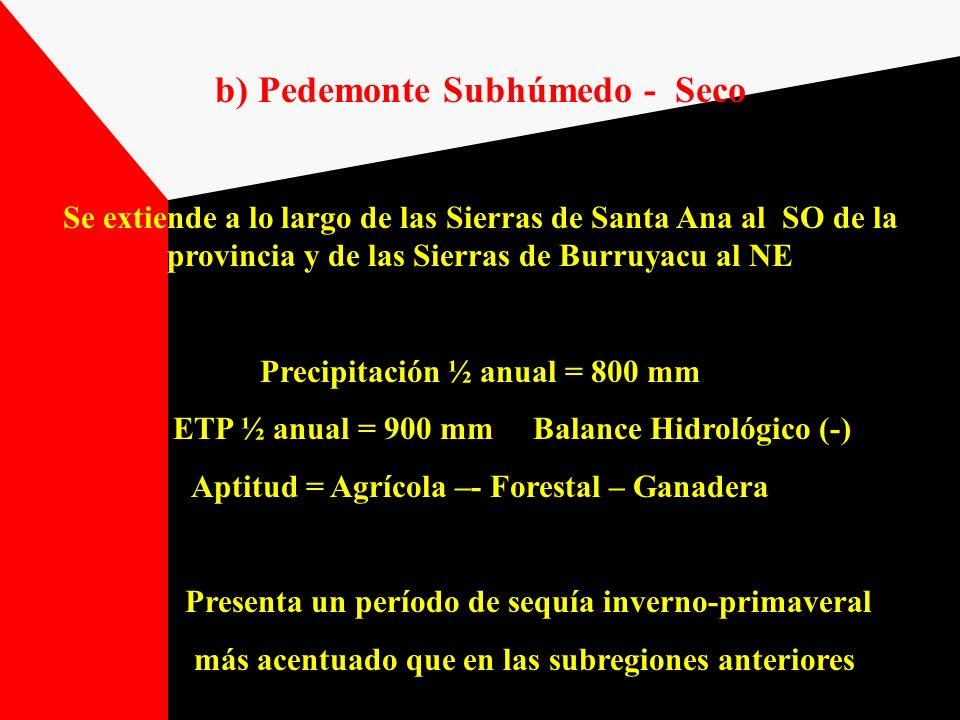 b) Pedemonte Subhúmedo - Seco
