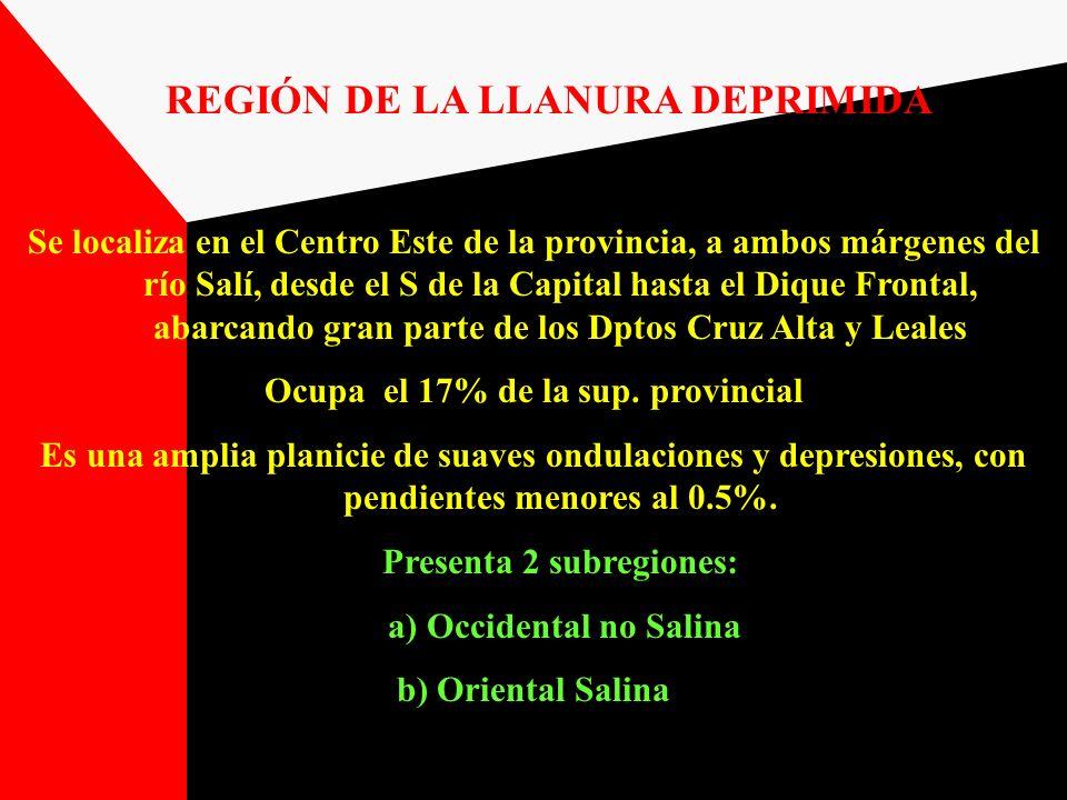 REGIÓN DE LA LLANURA DEPRIMIDA