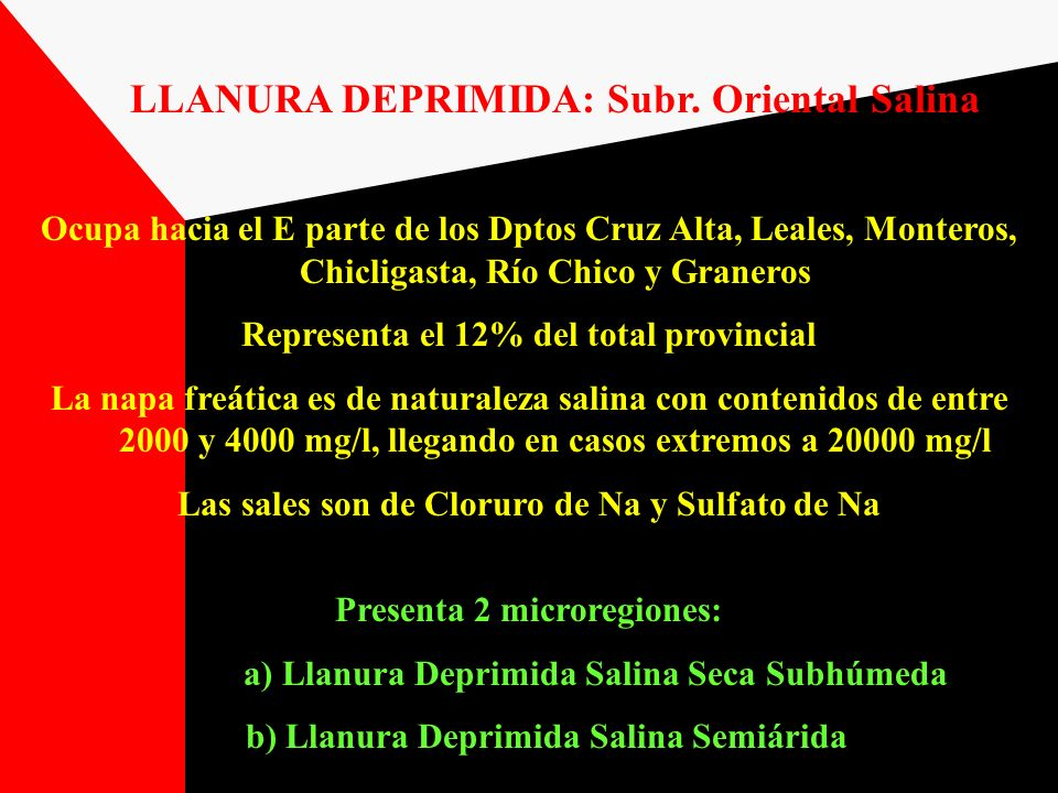 LLANURA DEPRIMIDA: Subr. Oriental Salina