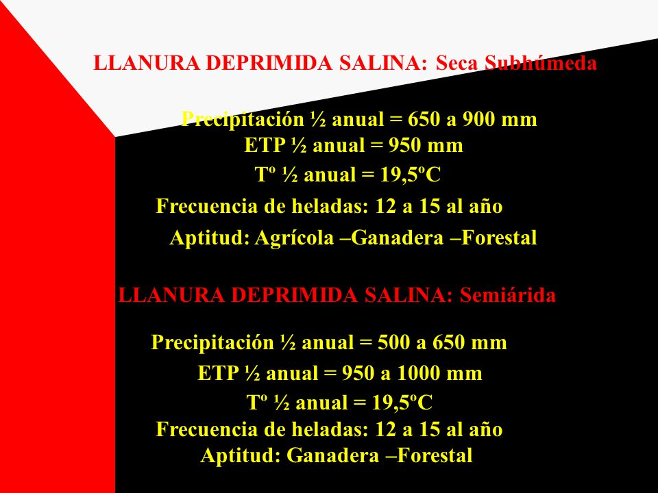 LLANURA DEPRIMIDA SALINA: Seca Subhúmeda