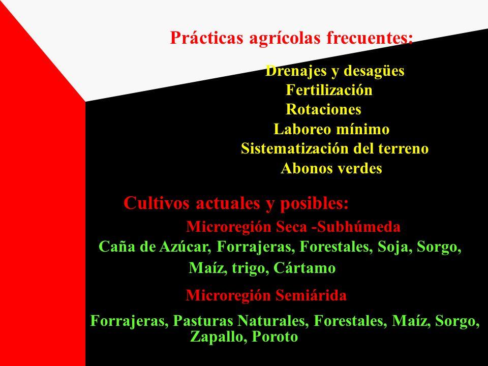 Prácticas agrícolas frecuentes: Microregión Semiárida