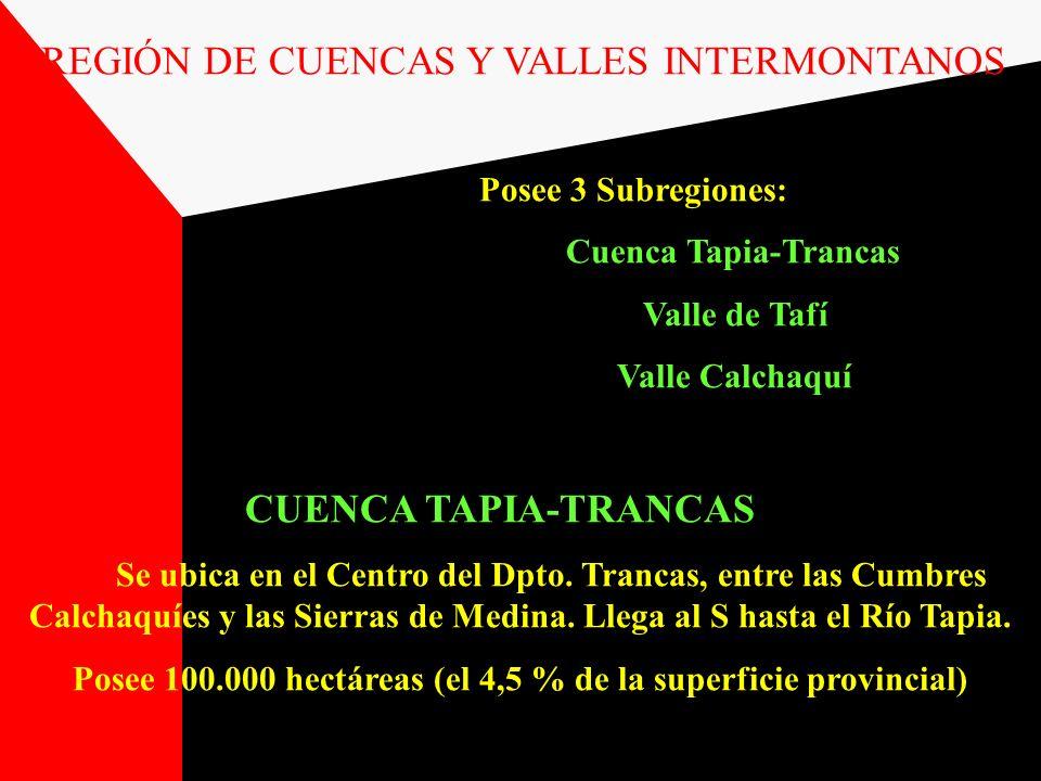 Posee 100.000 hectáreas (el 4,5 % de la superficie provincial)