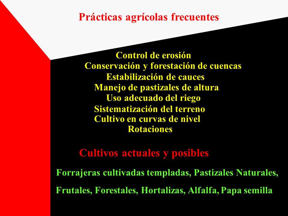 Cultivos actuales y posibles