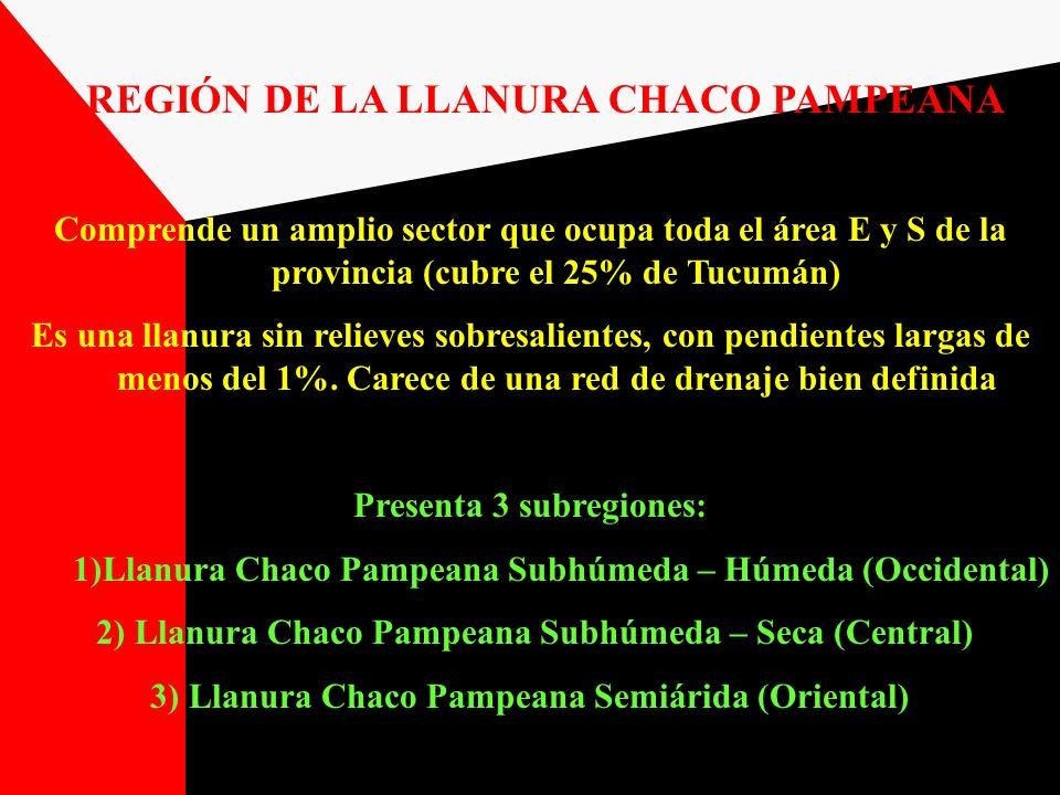 REGIÓN DE LA LLANURA CHACO PAMPEANA