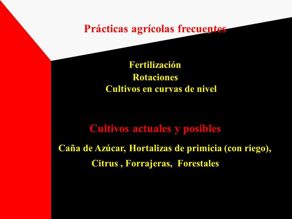 Prácticas agrícolas frecuentes Cultivos actuales y posibles