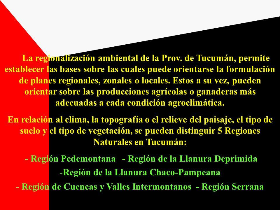 Región de la Llanura Chaco-Pampeana