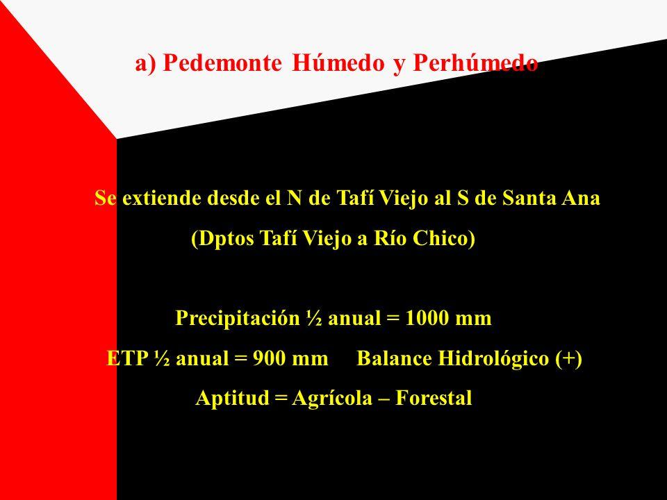 a) Pedemonte Húmedo y Perhúmedo