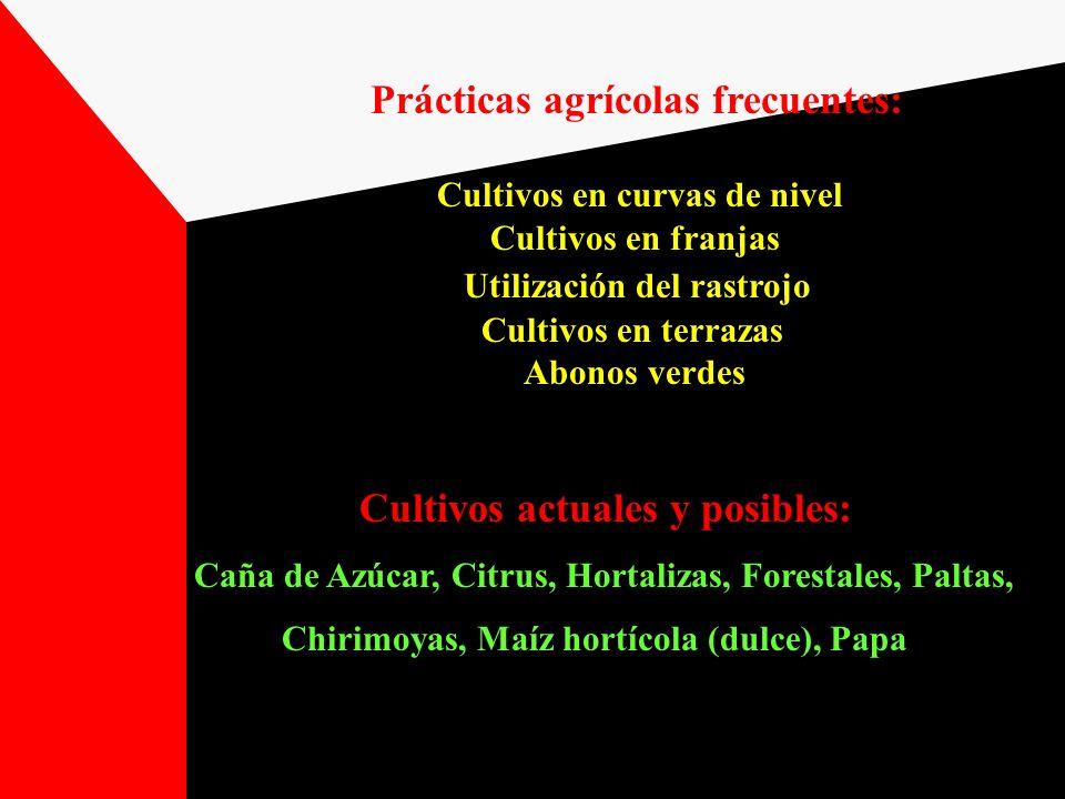Prácticas agrícolas frecuentes: Cultivos actuales y posibles: