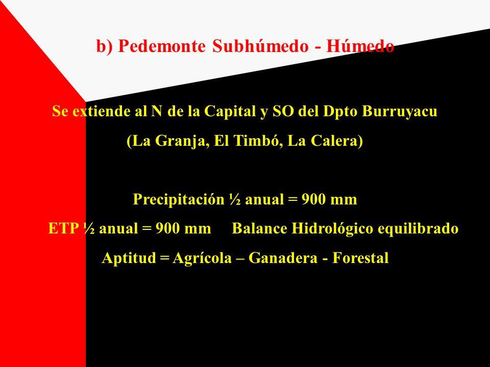 b) Pedemonte Subhúmedo - Húmedo