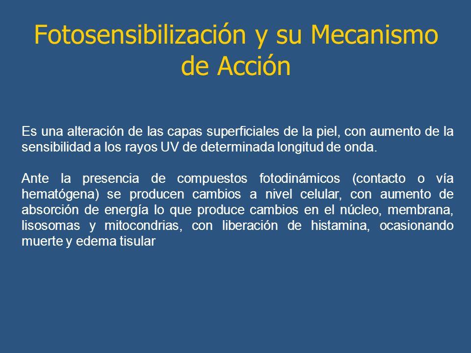 Fotosensibilización y su Mecanismo de Acción