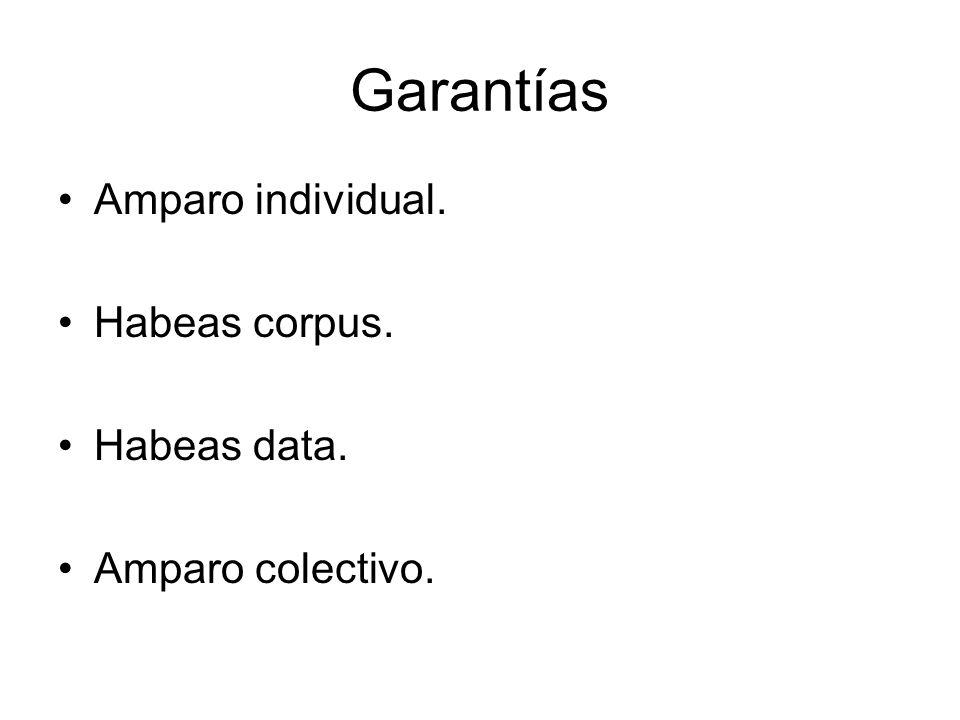 Garantías Amparo individual. Habeas corpus. Habeas data.