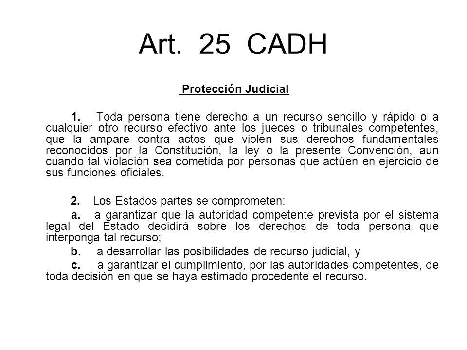 Art. 25 CADH Protección Judicial