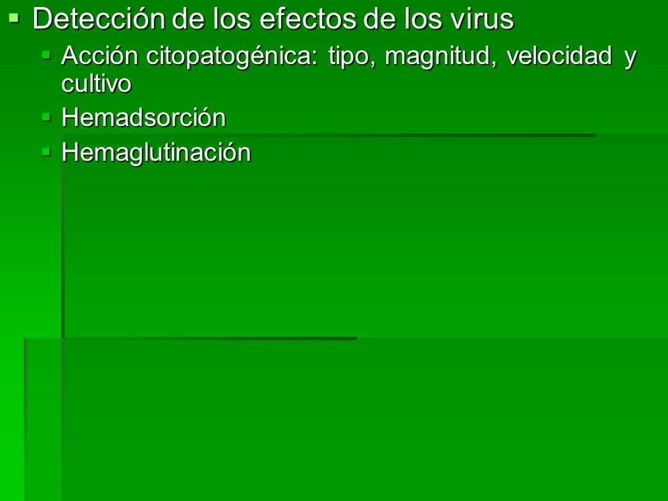 Detección de los efectos de los virus