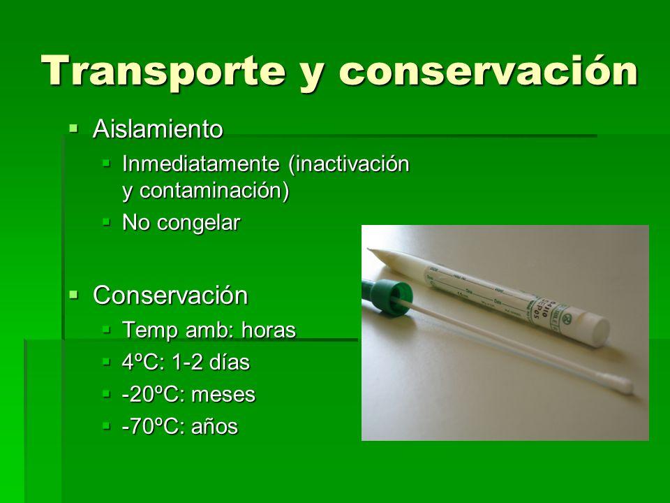 Transporte y conservación