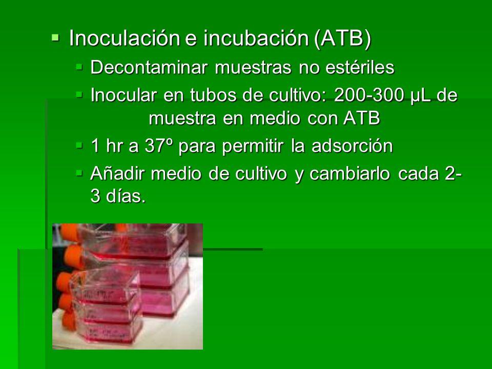 Inoculación e incubación (ATB)