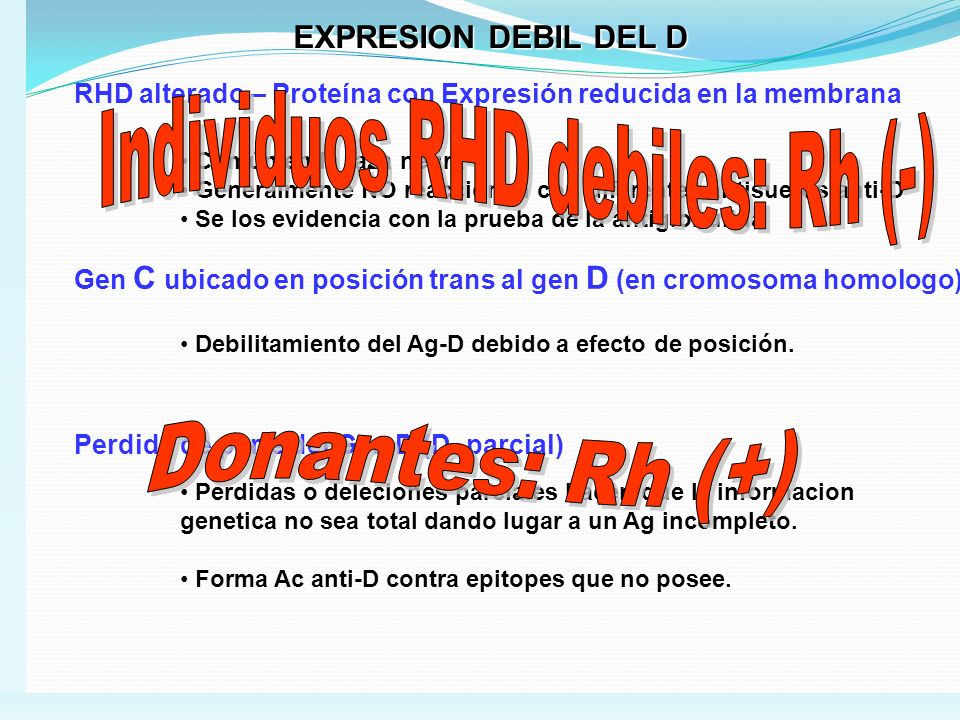 Individuos RHD debiles: Rh (-)