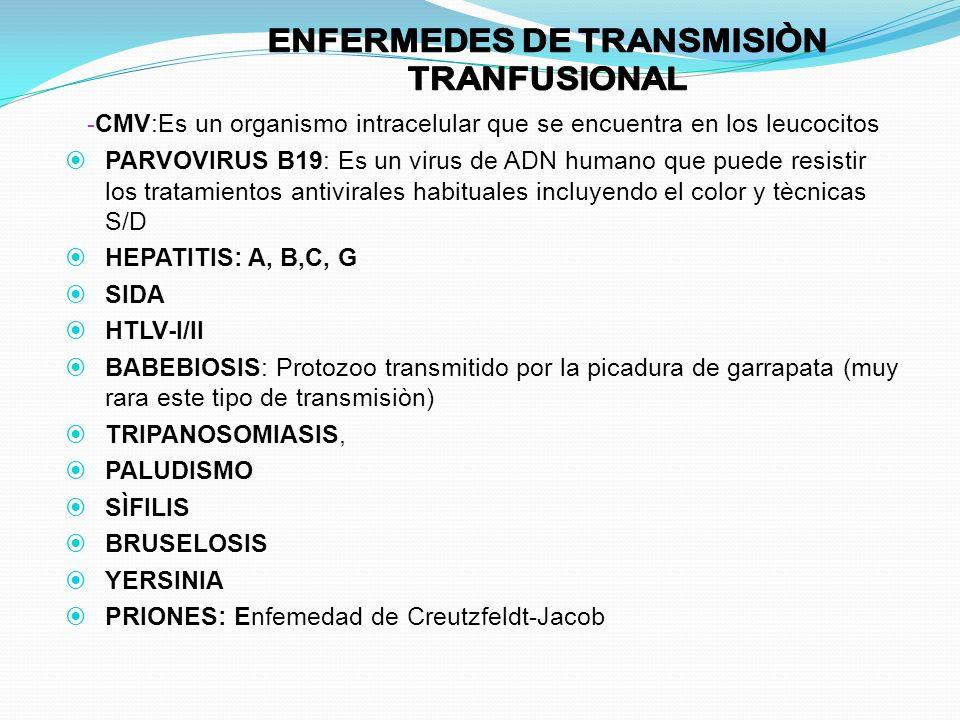 ENFERMEDES DE TRANSMISIÒN