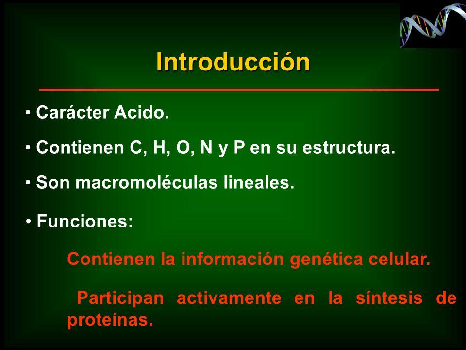 Introducción Carácter Acido.