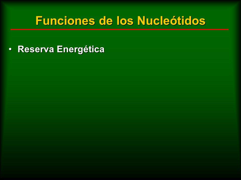 Funciones de los Nucleótidos