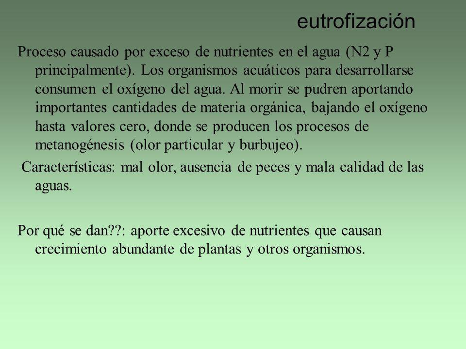 eutrofización