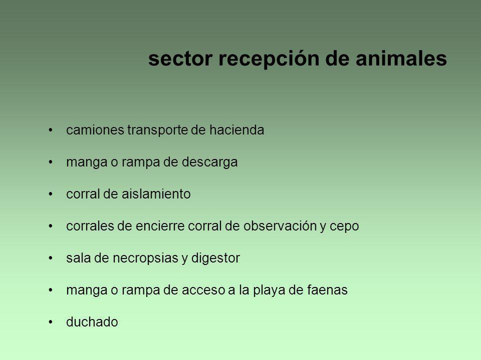 sector recepción de animales