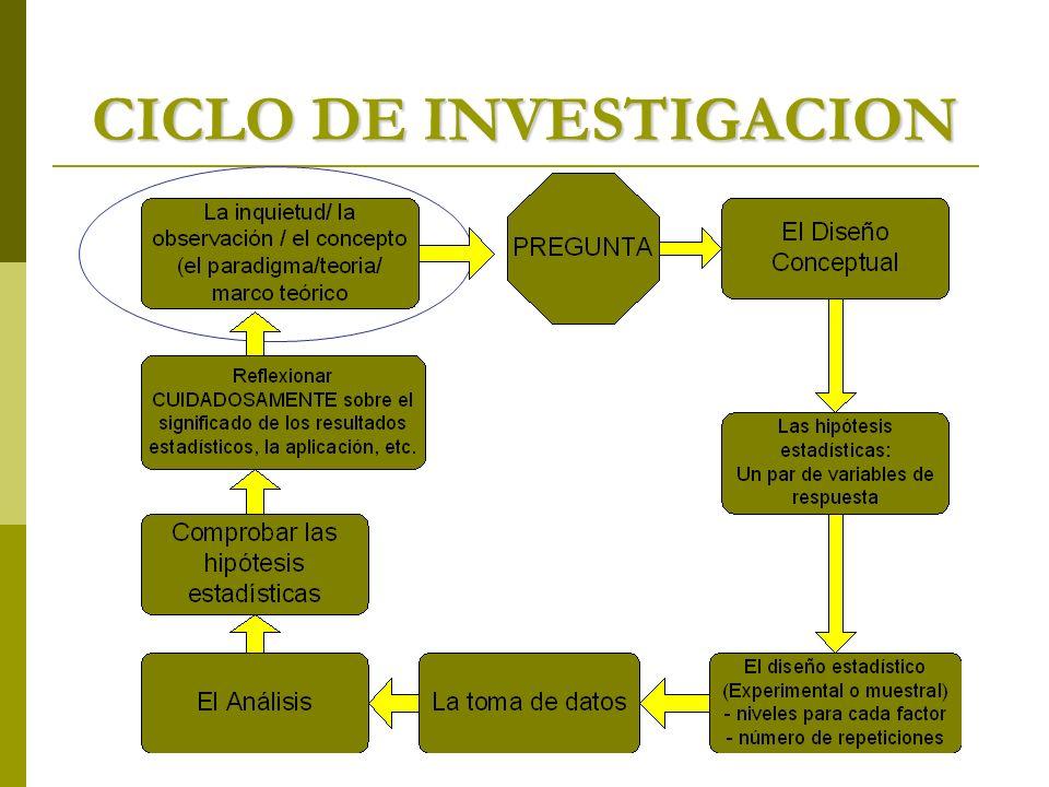 CICLO DE INVESTIGACION