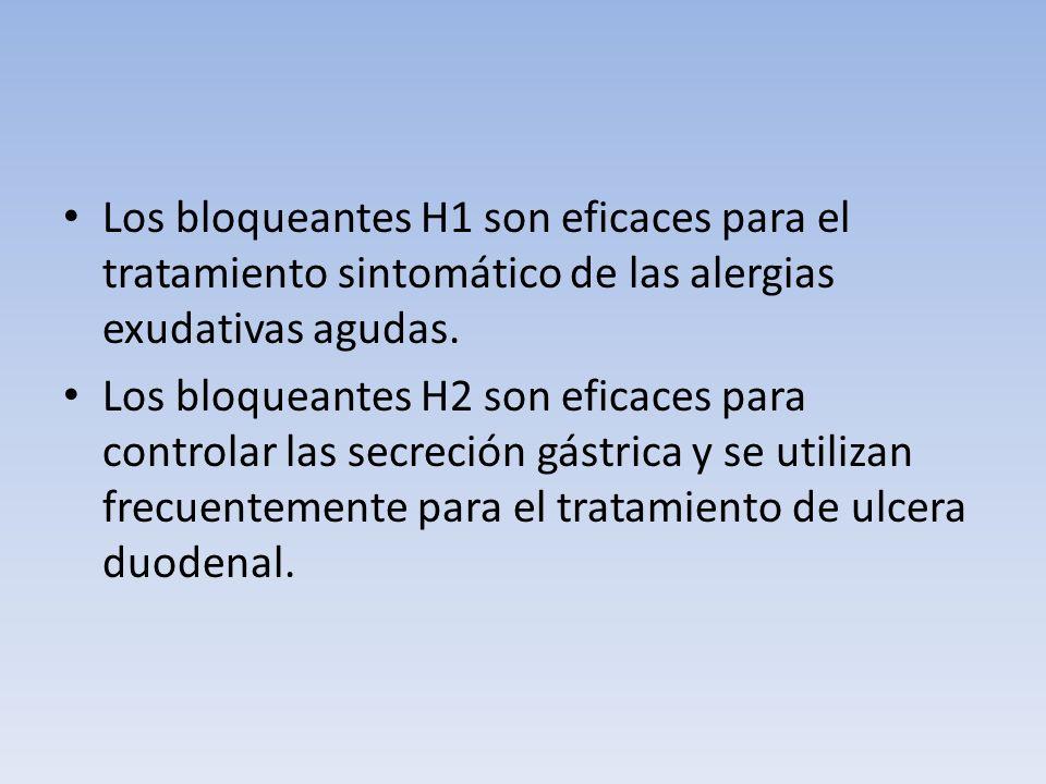 Los bloqueantes H1 son eficaces para el tratamiento sintomático de las alergias exudativas agudas.