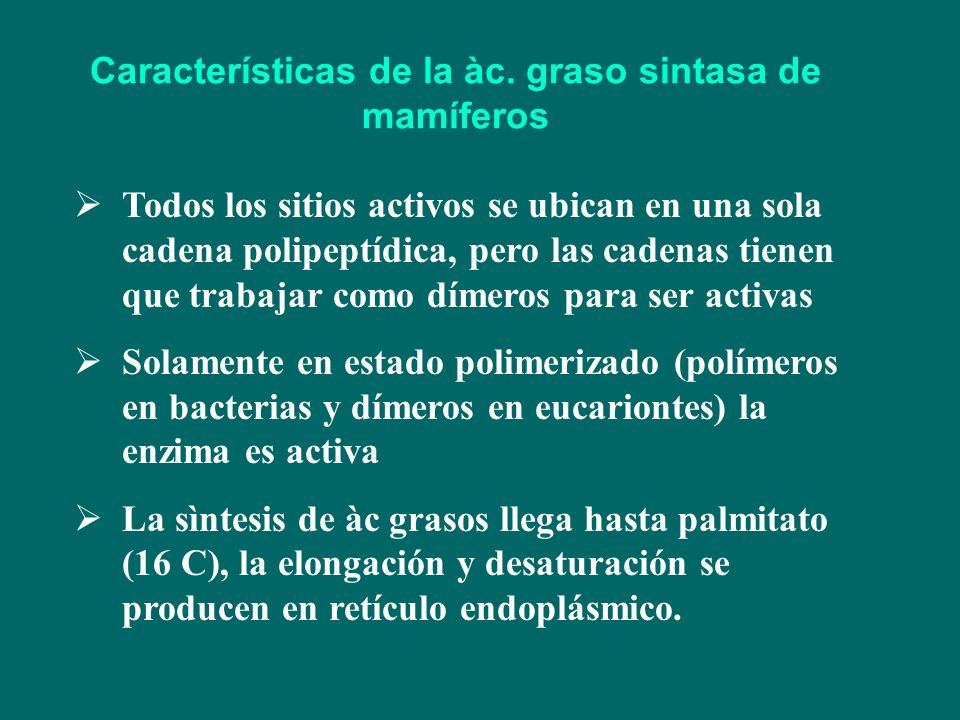 Características de la àc. graso sintasa de mamíferos