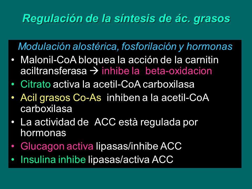Regulación de la síntesis de ác. grasos