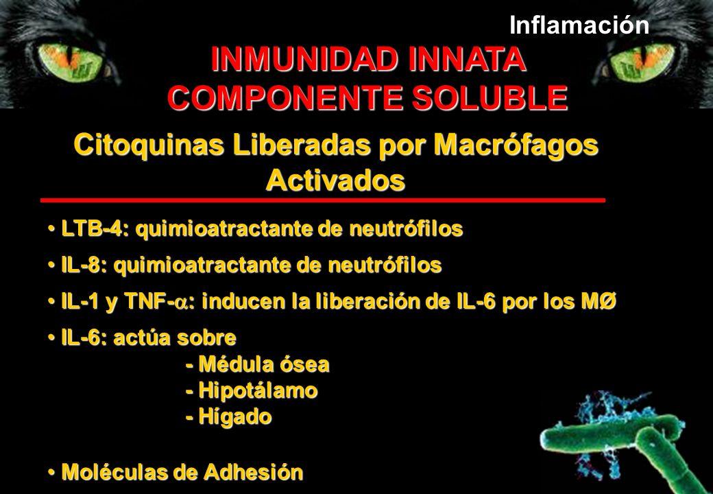Citoquinas Liberadas por Macrófagos Activados