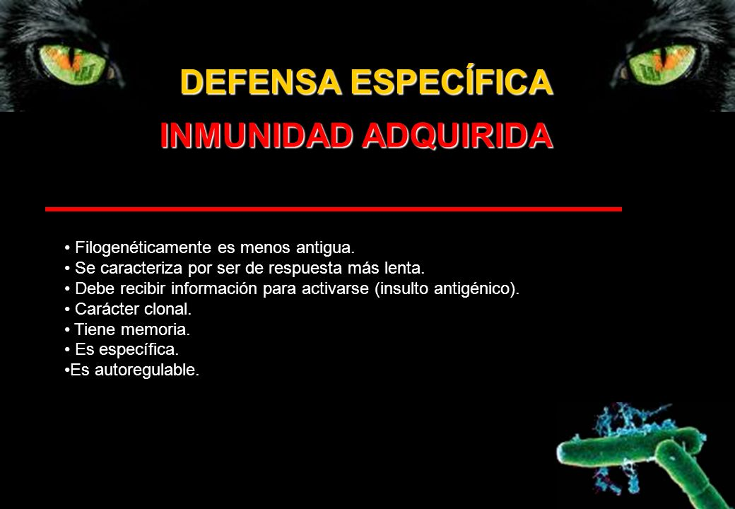 DEFENSA ESPECÍFICA INMUNIDAD ADQUIRIDA