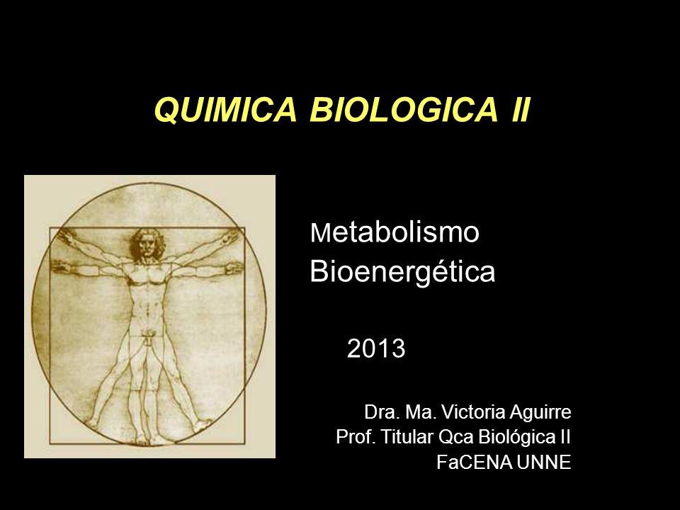Chapter 18 QUIMICA BIOLOGICA II Bioenergética Metabolismo 2013