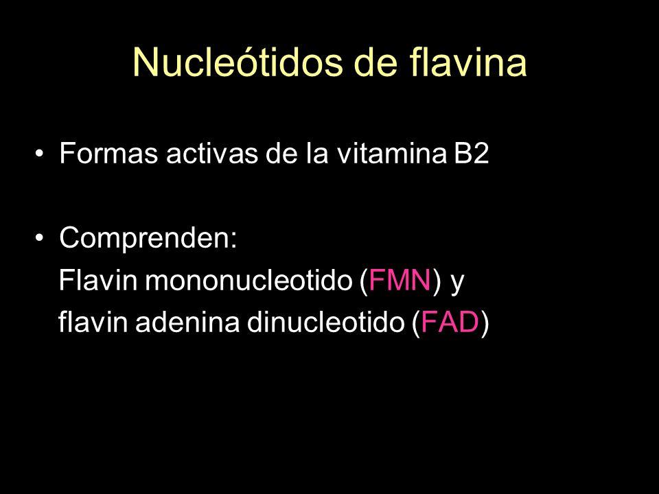 Nucleótidos de flavina