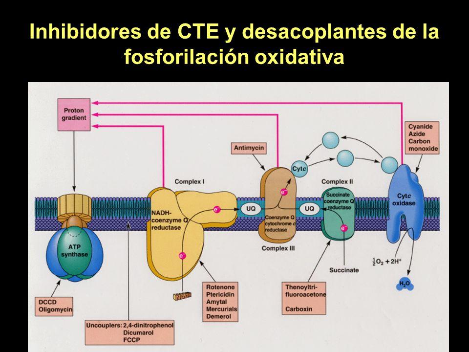 Inhibidores de CTE y desacoplantes de la fosforilación oxidativa
