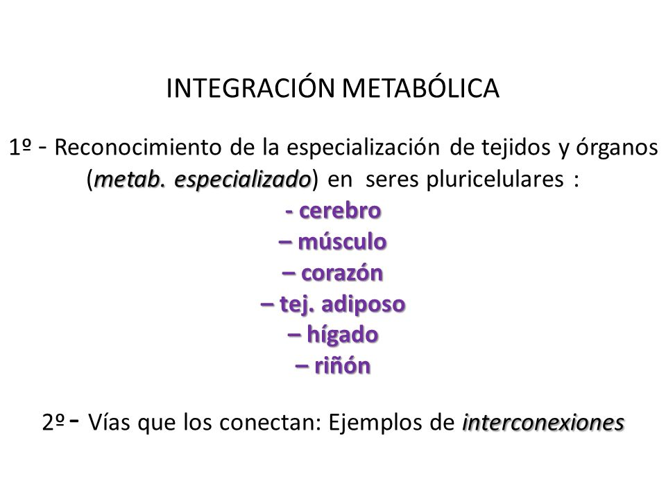 INTEGRACIÓN METABÓLICA 1º - Reconocimiento de la especialización de tejidos y órganos (metab.