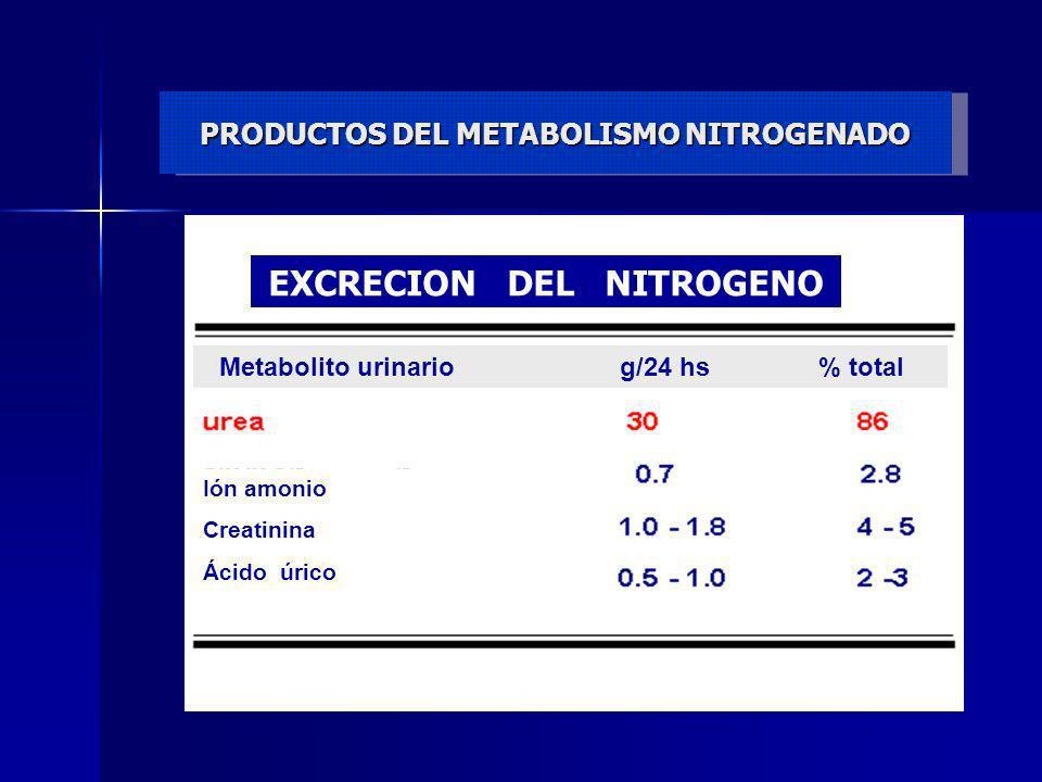 PRODUCTOS DEL METABOLISMO NITROGENADO