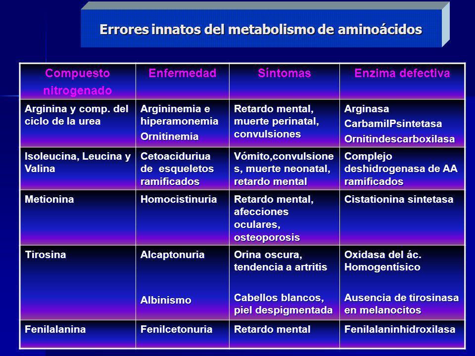 Errores innatos del metabolismo de aminoácidos