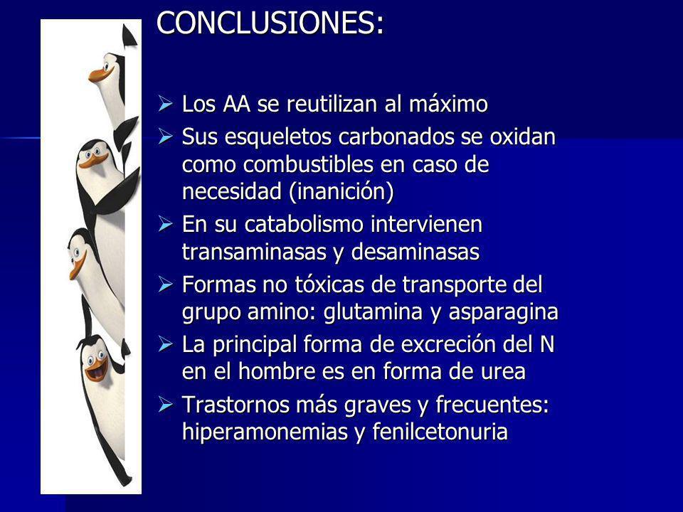 CONCLUSIONES: Los AA se reutilizan al máximo