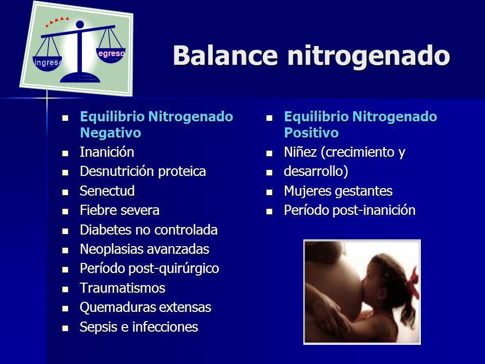 Balance nitrogenado Equilibrio Nitrogenado Negativo Inanición
