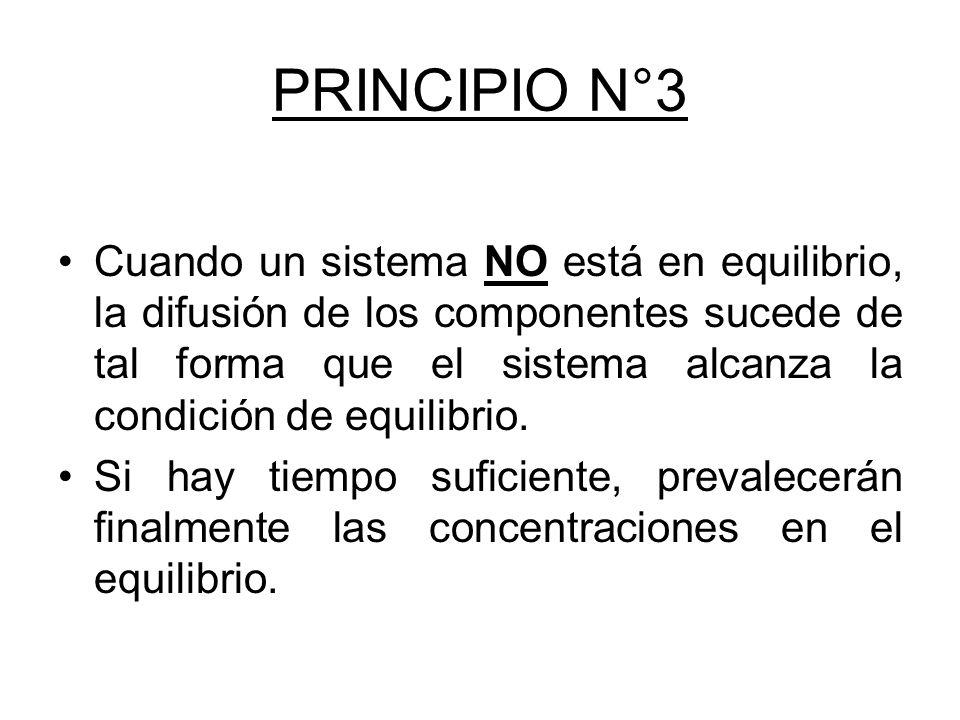 PRINCIPIO N°3