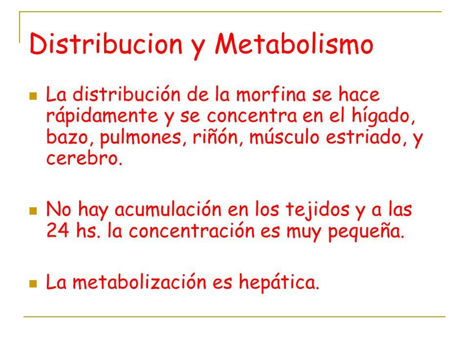 Distribucion y Metabolismo