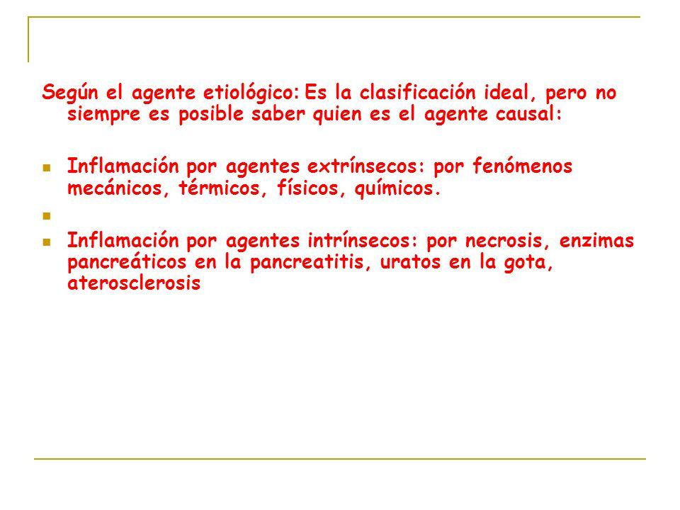 Según el agente etiológico: Es la clasificación ideal, pero no siempre es posible saber quien es el agente causal: