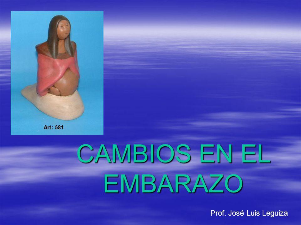 CAMBIOS EN EL EMBARAZO Prof. José Luis Leguiza