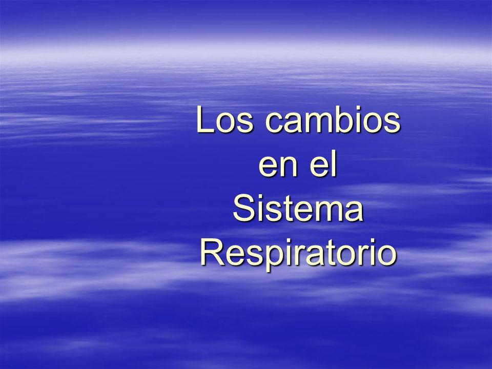 Los cambios en el Sistema Respiratorio