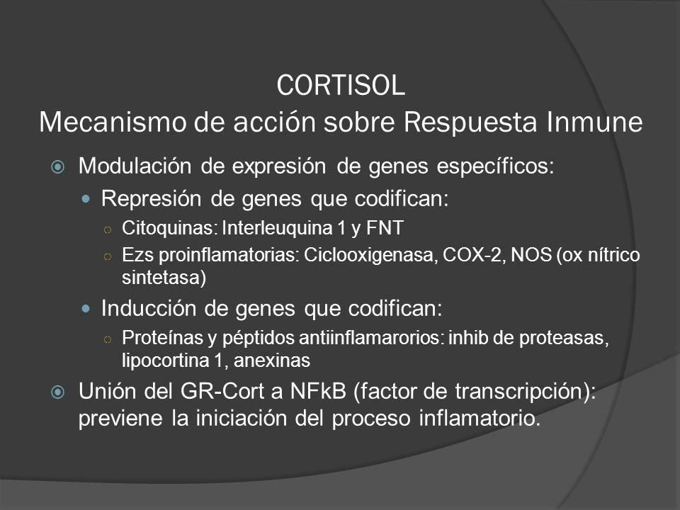 CORTISOL Mecanismo de acción sobre Respuesta Inmune